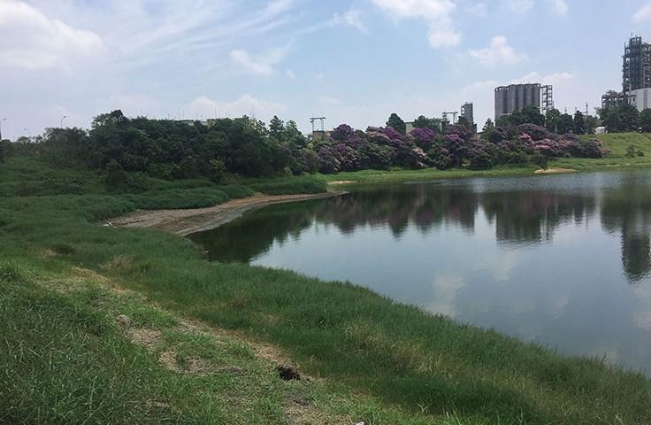 Área de objeto de projeto, às margens da represa da Refinaria Capuava, em Mauá (SP)