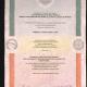 Cópia do certificado de pós-doutorado obtido pelo Prof. Dr. Marcelo M. Leão